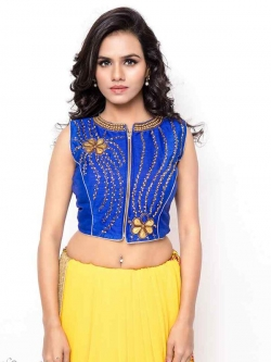 Blue Bhagalpuri Silk Zardosi With Stone Work Blouses