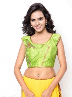 Green Bhagalpuri Silk Zari Work, Golden Lace, Stone Work Blouses